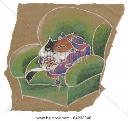 Cute cat on the armchair