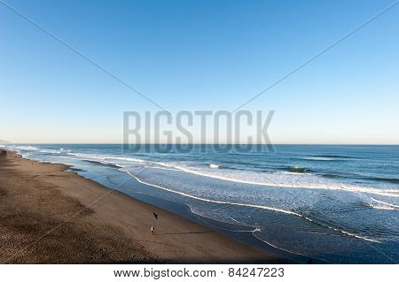 Ocean With Waves On Sandy Beach And Bird