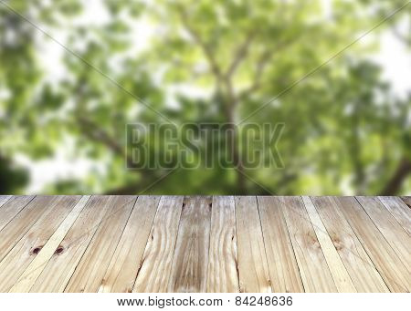 Broad Planks And Tree In Garden Of Blur Background.