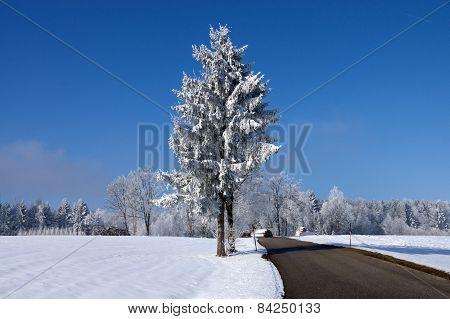 Ica Age In Muehlberg, Bavaria, Germany