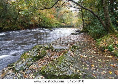 River Dart At New Bridge, Holne, Dartmoor England.