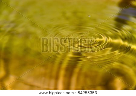 Concentric wave on the water surface
