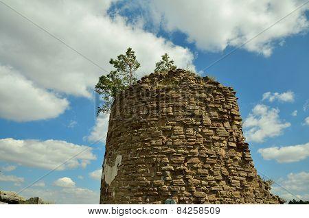 Regenstein Castle (defense tower)