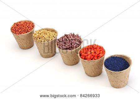 Various Sowing Seed