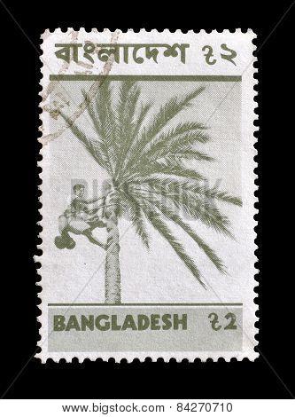 Bangladesh 1973