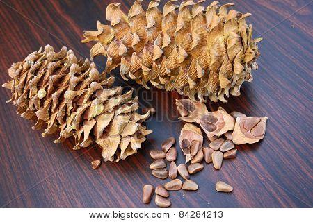 Pine Nut Grain