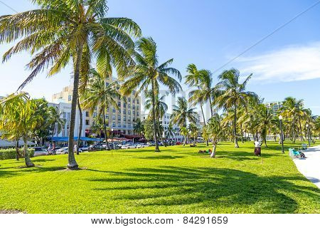People Relaxing At Beautiful Miami Beach