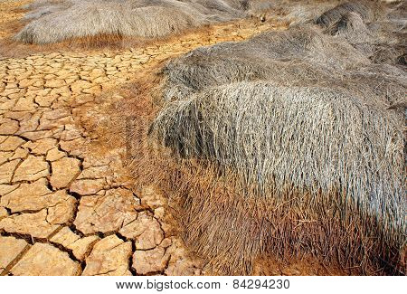 Drought Land, Climate Change, Hot Summer