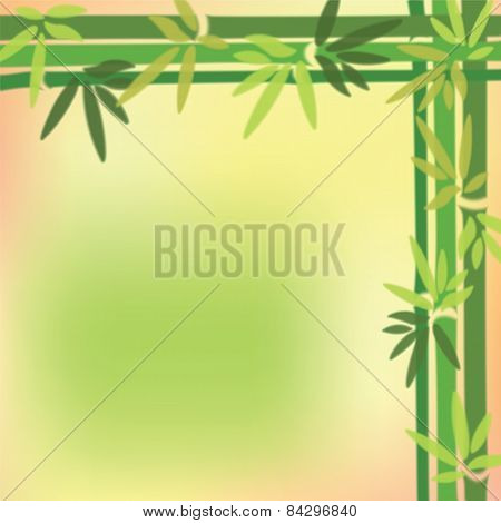 Blurred Bamboo Trees And Leaves At On Colorful Background.