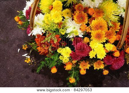 Spring Flowers, Flower Basket