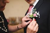 picture of boutonniere  - Pinning a Boutonniere for groom on his wedding - JPG