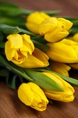 image of yellow buds  - Big bouquet of beautiful yellow flowers - JPG