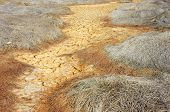 picture of global-warming  - Hay on drought land amazing arid and cracked ground climate change made agriculture plantation have to reduct in summer it very hot warming is global problem cause by greenhouse effect - JPG