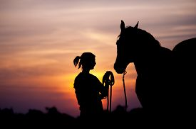 stock photo of colt  - The girl near to a horse standing in front of a beautiful sunset - JPG