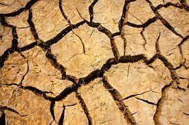 picture of drought  - Hay on drought land amazing arid and cracked ground climate change made agriculture plantation have to reduct in summer it very hot warming is global problem cause by greenhouse effect - JPG