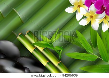 Bamboo, stones, bamboo leaf and flower background