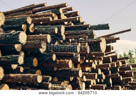 Logs store on sky background.