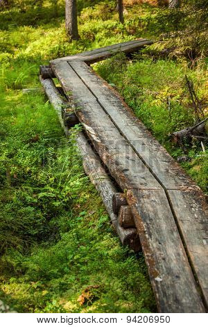 Wooden path in Finland forest.