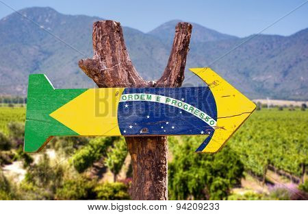 Brazil Flag wooden sign with vineyard background
