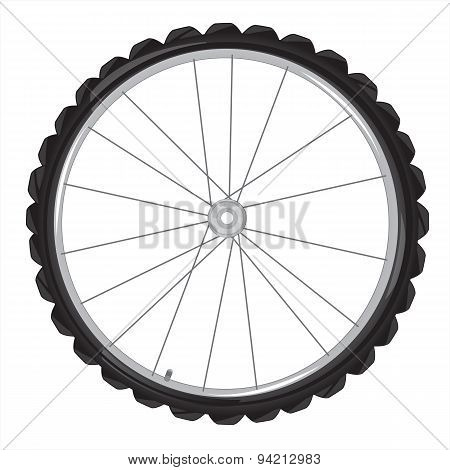 Wheel of the bicycle