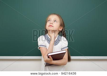 Schoolgirl with book near the school board