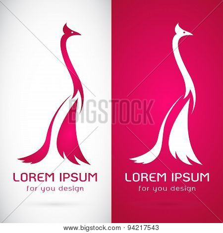 Vector Image Of An Peacock Design On White Background And Pink Background, Logo, Symbol