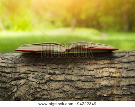 Book On The Tree.