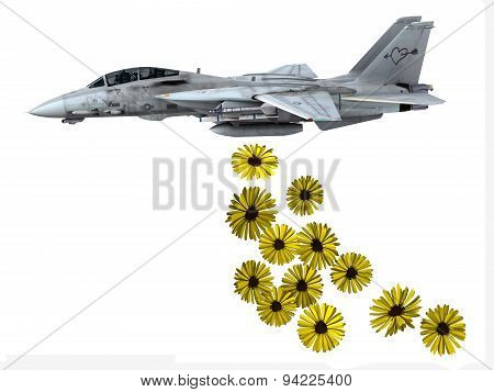 Warplane Launching Yellow Flowers