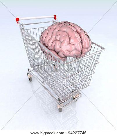 Brain Into Shopping Cart
