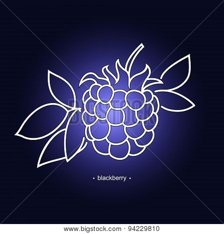 Blackberry In The Contours