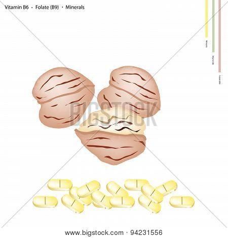 Walnuts With Vitamin B6, B9 And Minerals