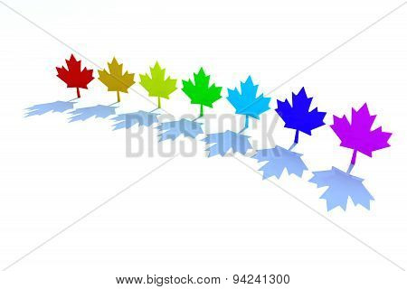 3D Maple Leafs Rainbow Colors