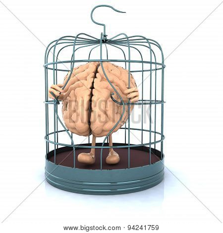 Brain Escape From The Birdcage