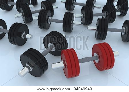 Body Building Weight