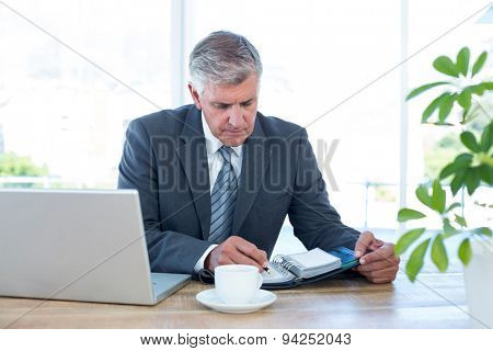 Businessman checking his diary in his office