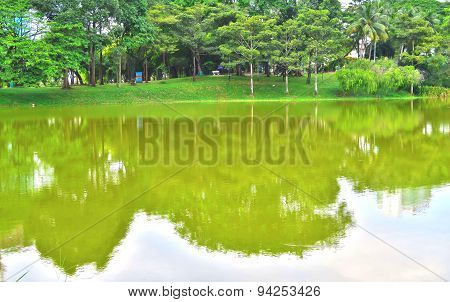 Reflection of green trees and blue sky on the lake in a park