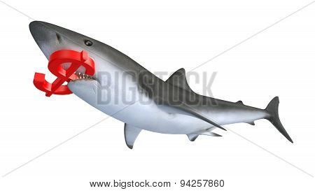 Shark Biting A Dollar Currency Sign
