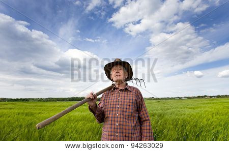 Senio Peasant In The Field
