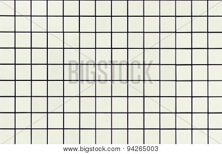 Modern style design of White mosaic tile