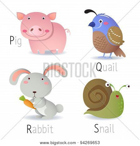 Alphabet With Animals From P To S