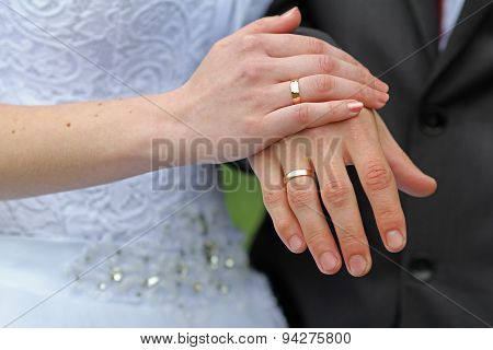 Hands Of The Groom And The Bride
