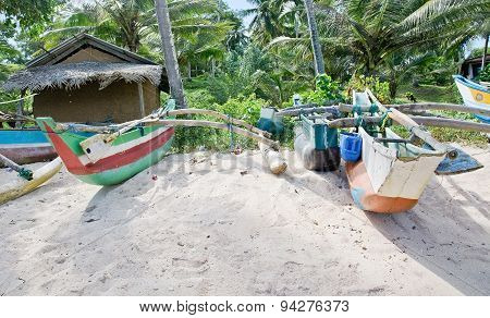 Beach with light wood boats