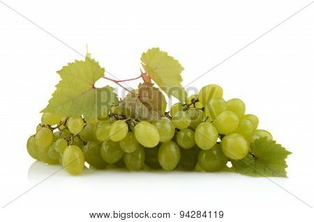Bunch Of White Grapes Isolated On White With Leaf