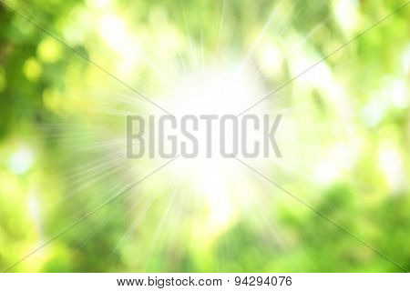 Beautiful green trees in resort, blurred abstract view