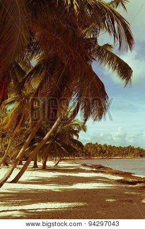 Art Beautiful Retro Seaside View Background