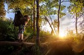 picture of birchwood  - Man with backpack and camera in the summer forest at sunset sky background - JPG