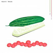 picture of marrow  - Healthcare Concept Illustration of Marrows or Cucumbers with Vitamin K and Minerals Tablet Essential Nutrient for Life - JPG