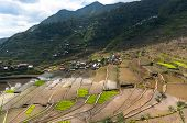 foto of luzon  - beautiful mountains with rice paddies in the mountains of the Philippine Islands - JPG