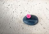 foto of sackcloth  - Black smooth stone with pink Flower on wet Sackcloth background - JPG
