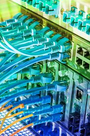 picture of cat5  - Fiber Optic cables connected to an optic ports and UTP Network cables connected to ethernet ports - JPG